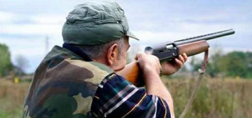 422616_caccia-cacciatore-fucile