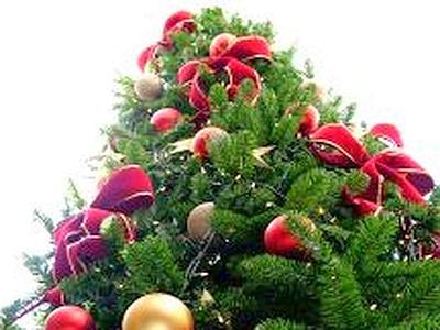Natale_albero_aperto_web--400x300