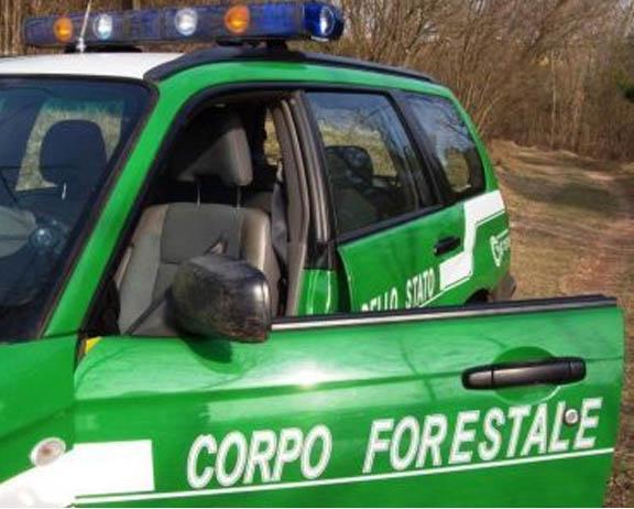 corpo-forestale2_0