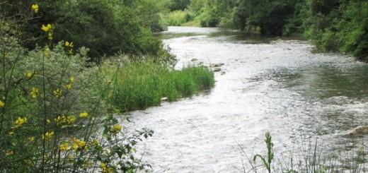 fiume-tanagro-foto