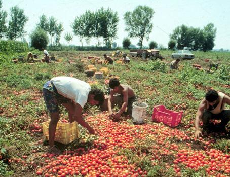 Agricoltori Salerno