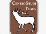tegea
