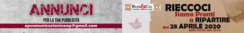 BOX&CO ANNUNCI