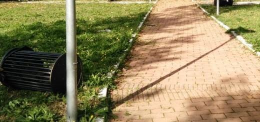 vandali a polla