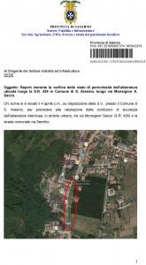 Report alberatura S. Arsenio