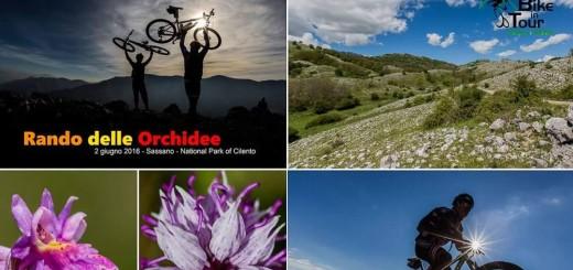 RANDO DELLE ORCHIDEE- BIKE IN TOUR SASSANO