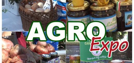 agroexpo frame