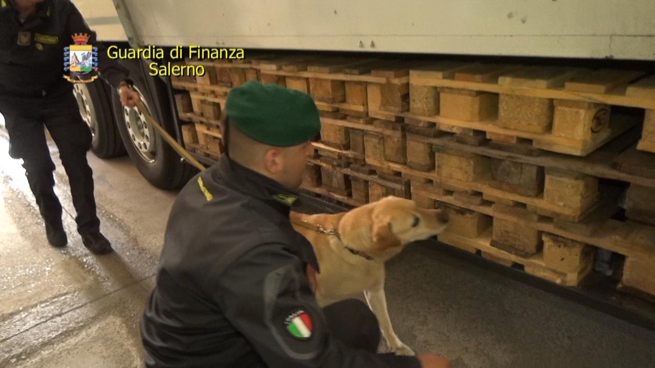 Scafati: droga dall'Olanda nascosta tra i fiori, arrestati due corrieri