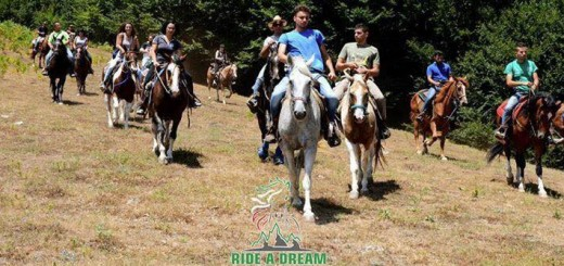 cavalli montesano