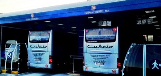364_curcio bus terminal