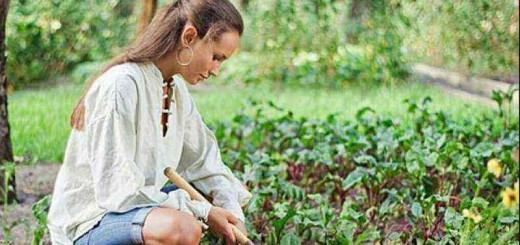 agricoltura-è-donna-siracusa-times-