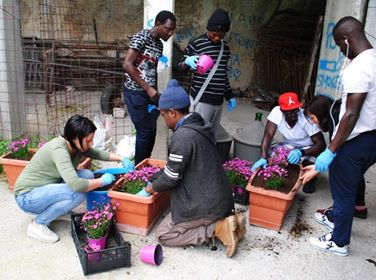 Risultati immagini per sanza migranti aree verdi