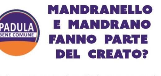 manifesto padula